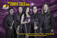 The Valley Cats Band