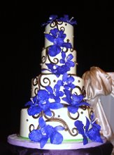 Scrumptious Wedding and Specialty Cakes Home of Colettes Cake Goddess