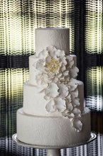 wedding cakes greenwich ct parzych cakes wedding cakes and desserts in greenwich 24457