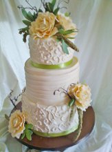 Cake Creations by Paula Ames