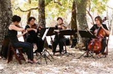 Bellarosa String Quartet