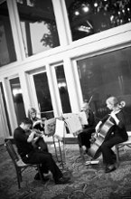 Celebration String Quartet