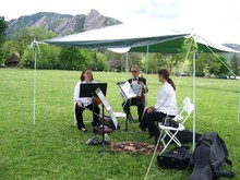Ptarmigan String Quartet