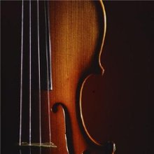 Carman Violinist Professional Wedding and Special Events Violinist