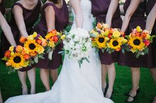 Crazy Daisies Flowers and Weddings