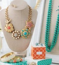 Stella and Dot Shannon Berquist Independent Stylist