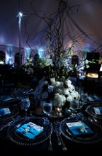 Contempo Linen and Event Rentals