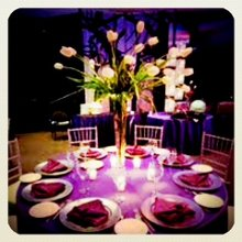The Exquisite Soiree Ltd