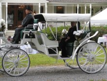 Elysian Felds Farm Horse and Carriage