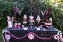 Michigan Weddings and Candy Buffets Co