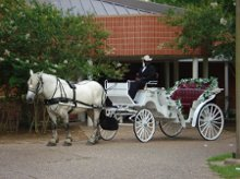 Southern Carriage Company