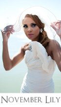 November Lily Luxury Stylist