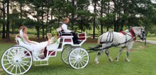 The Marriage Carriage